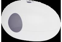 POOPOOPEEDO - WHITE